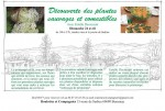 atelier plantes sauvages avril 2016